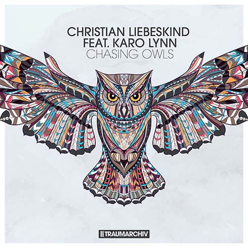 Christian Liebeskind feat. Karo Lynn - Chasing Owls (Cover)