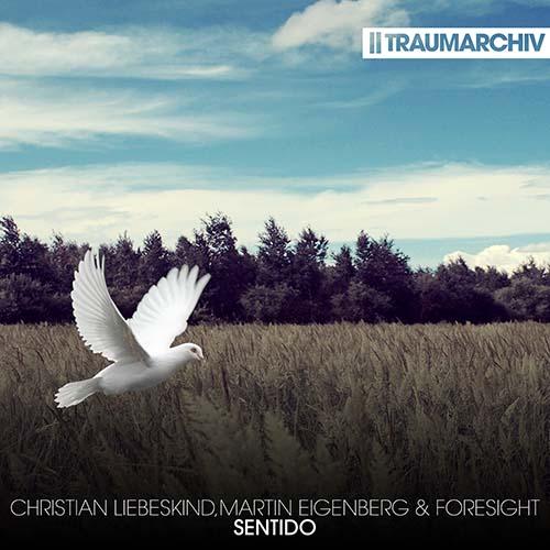 Christian Liebeskind, Martin Eigenberg, Foresight - Sentido (Cover)